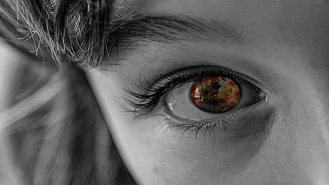 bambinisoldatopixabay